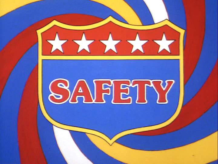 The Safety segment
